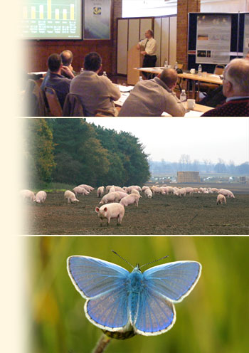Training course, pig farming and rare butterfly